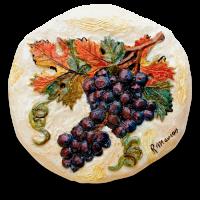 icon camera uva