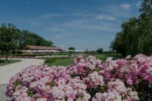 giardino casa dei racconti ceggia